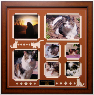 pet loss memorial products cat pet picture frame 16 x 16